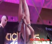Stripper pole night club you would not want to miss out on