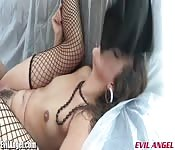 Fishnets, small tits and a pretty face