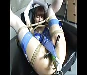 Biddable Asian bound and toyed with