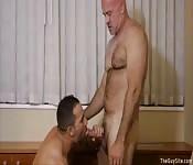 Sexy older Daddies fucking hard