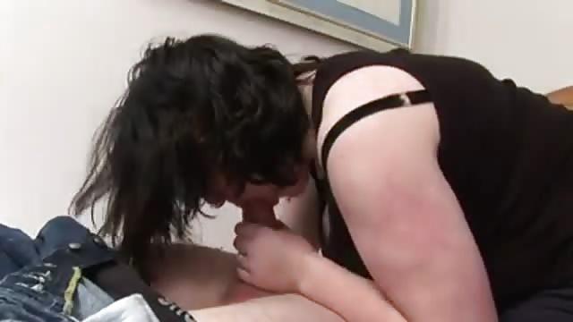 Gros Mésange chatte rasée